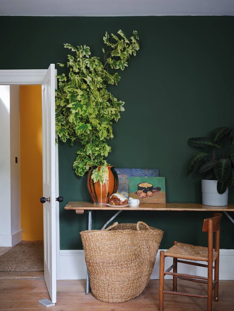 Duck Green - Paint colour trends for 2020 - the new key colours to paint your home in